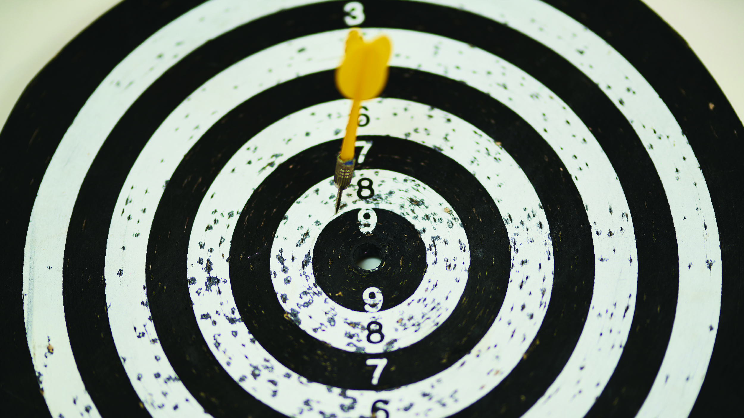Wewa Films | How to Define a Target Audience